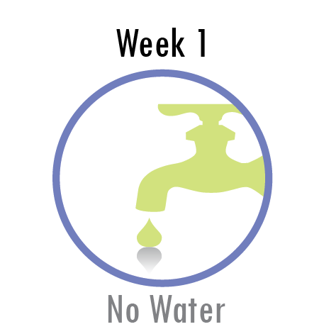 Week 2 - No Water
